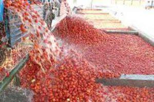 تصفیه آب در تولید رب گوجه
